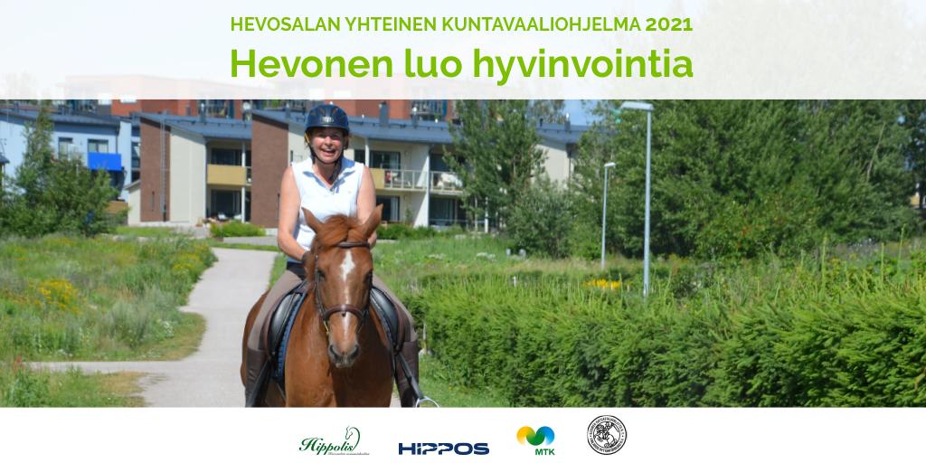 Hevonen kaupunkiympäristössä