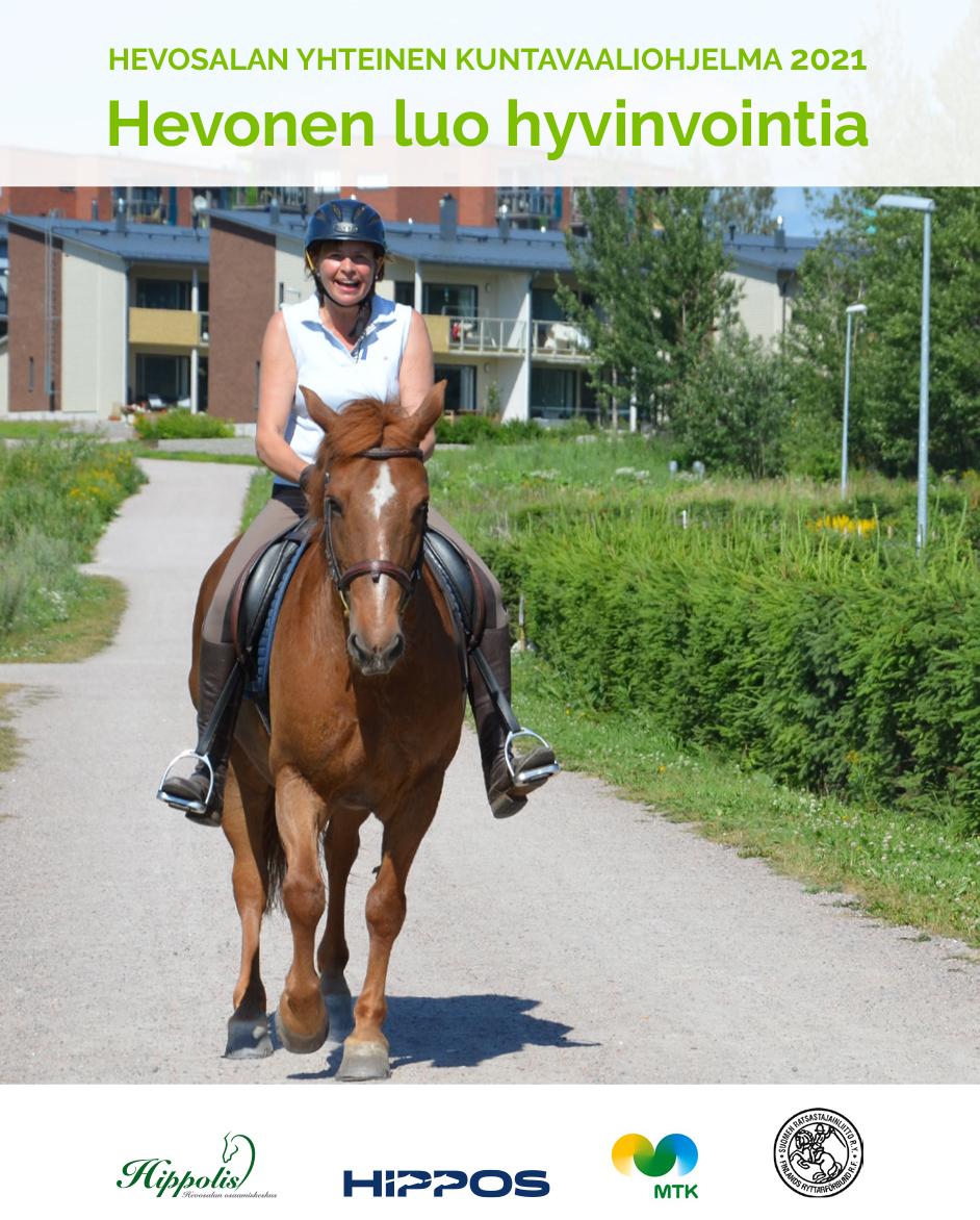 Hevonen kaupunkiympäristössä.