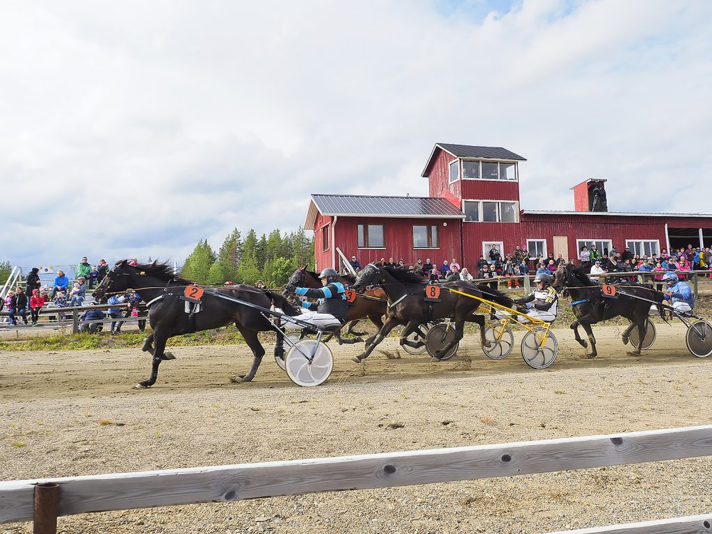 Kaukosen ravirata Kuva: Kittilän hevosystäväinseura ry