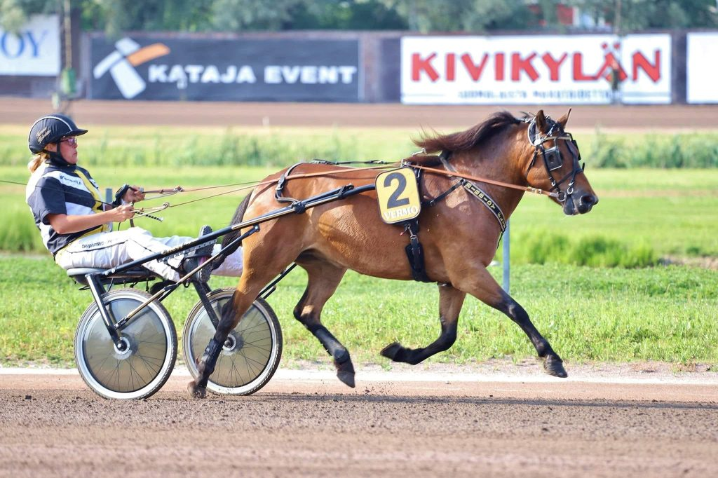 Henna Koiviston suojatti Bibbidy Flit starttaa Teivon Gli Grand Prix:sa ensimmäistä kertaa avoimen tason poneja vastaan. Kuva: Hippos /Kaisa Stengård.
