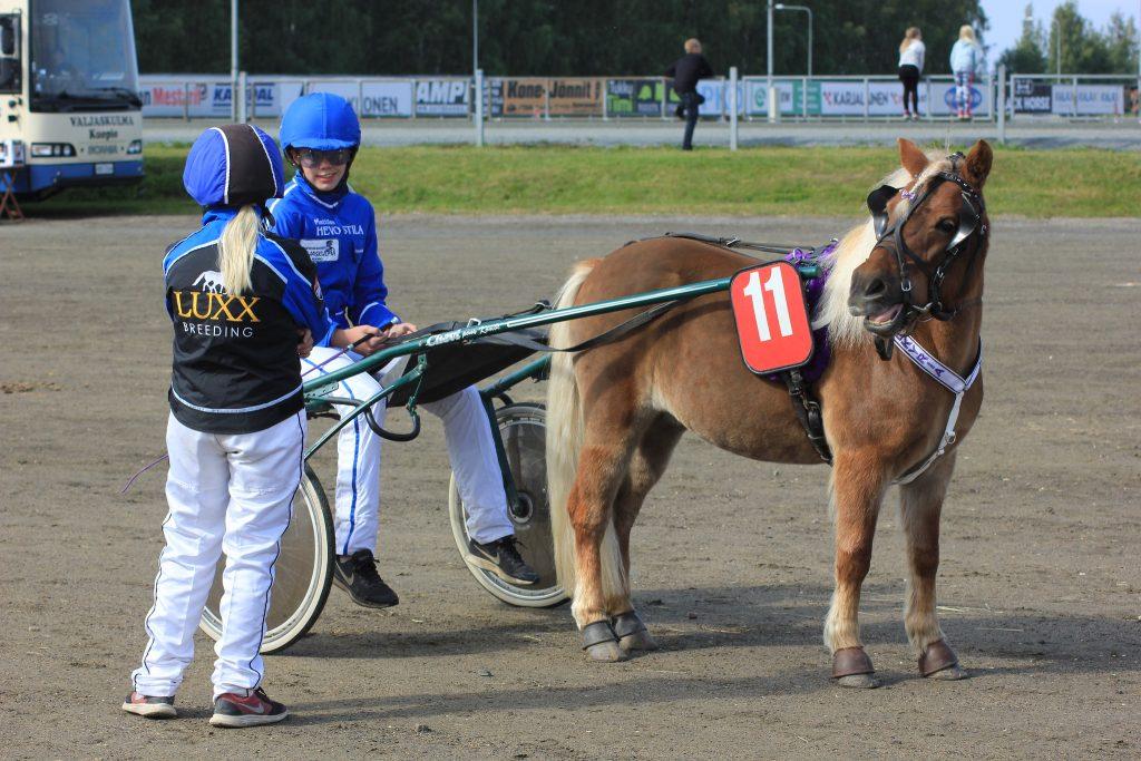 Valkyria ja Kaisa Venäläinen lähtevät jahtaamaan Kuopion Mini Stakes suurkilpailusta totosijaa. Kuva: Hippos / Roosa Kerviäinen.